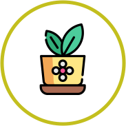 Icona piante in vaso
